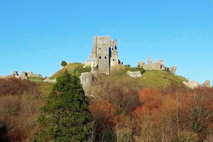 Corfe Castle Surgery