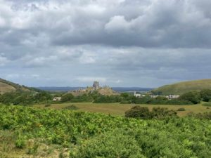 View from Corfe Common