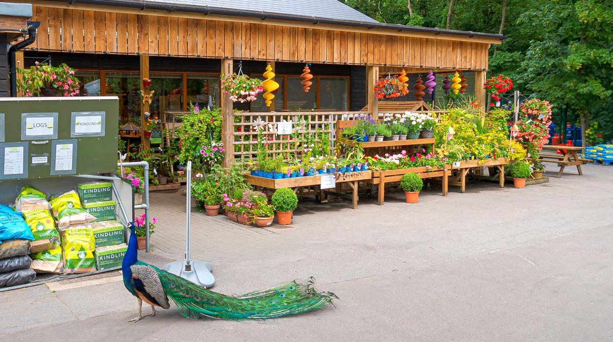Norden Farm Shop