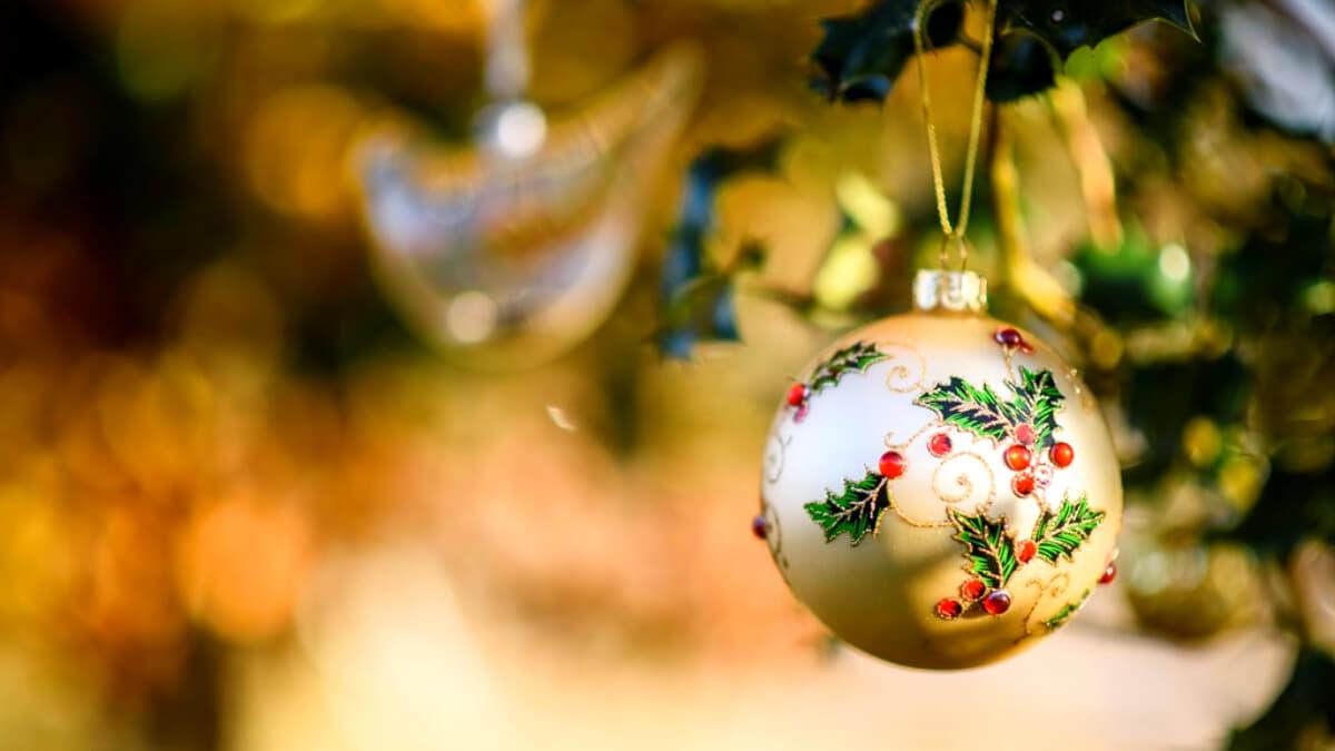 RSPB Arne Christmas Market